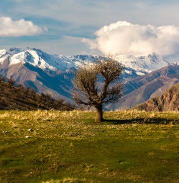 كوردستان - السليمانية © كارزان عمر
